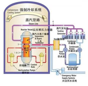 我们该如何看待日本排放福岛核废水?